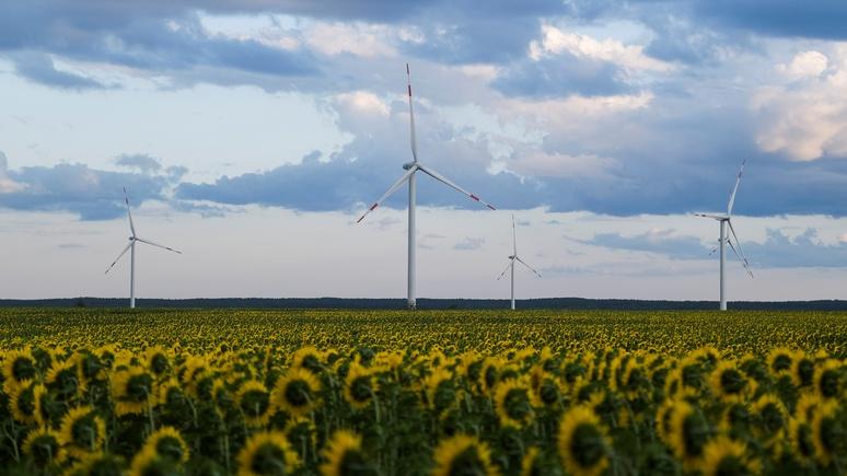 Guardian: нобелевские лауреаты призвали мир к отказу от ископаемого топлива