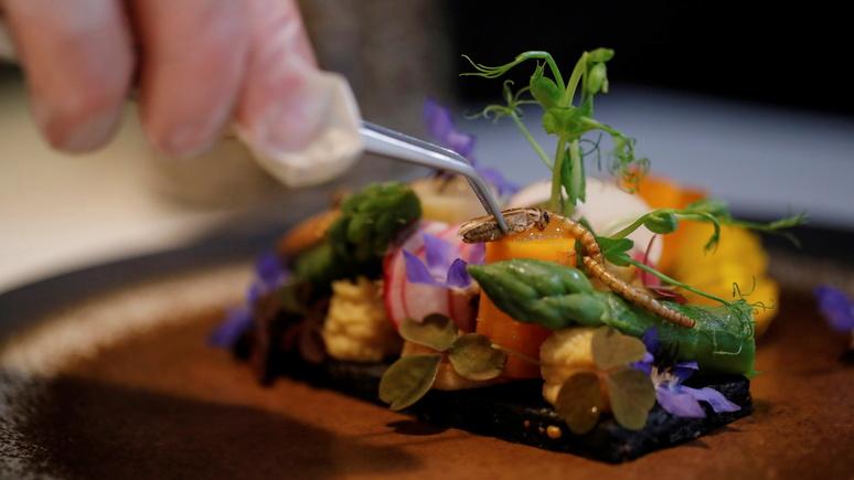 Times: «экологически чистое питание» — в Британии набирают популярность блюда из насекомых