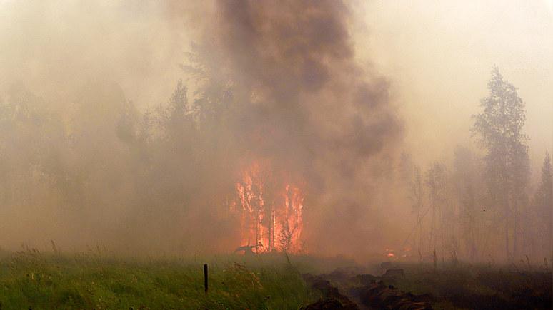 Dagbladet: Северный полюс впервые накрыло дымом от лесных пожаров в России
