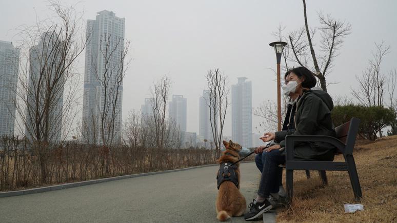 Guardian: президент Южной Кореи предложил запретить употребление собак в пищу