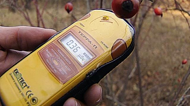 Жители радиоактивной зоны не верят в торжество правосудия