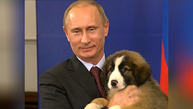 Rzeczpospolita: Мачо в Кремле заменят мудрым отцом нации