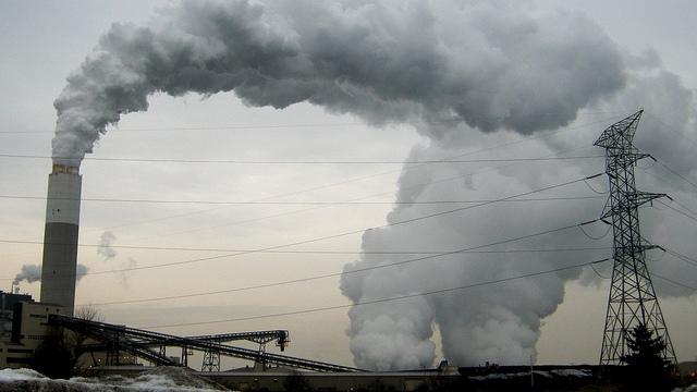 WP: В России защищать природу опасно для жизни