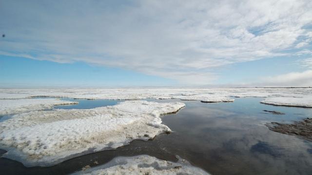 ARD: Реальный диалог в «битве за Арктику» - это вряд ли