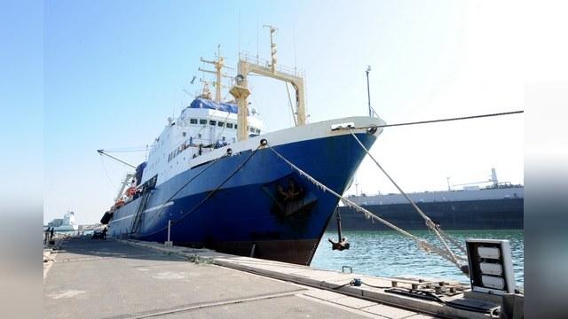 Greenpeace: Интриги экологов в деле «Олега Найденова» - выдумка России