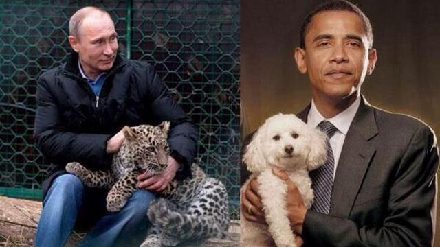 Fox: Рогозин выставил американского президента «хлюпиком»