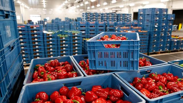 Богатый урожай подвел европейских фермеров