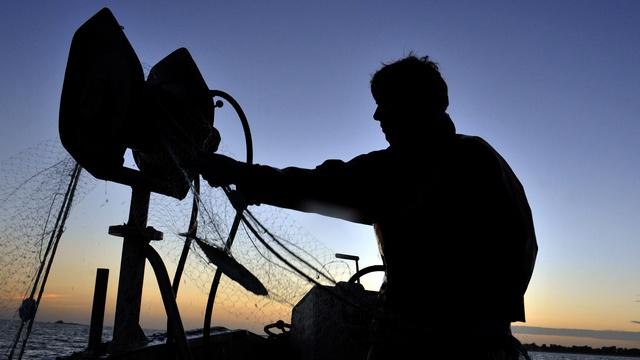 DWN: Шведского рыбака Ове приняли за «российского спецназовца»