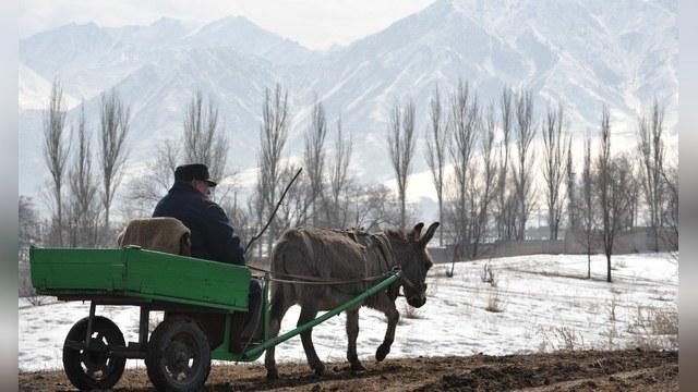 Huffington Post: Дружба со Средней Азией поможет Западу «одолеть» Россию