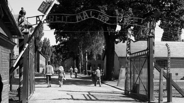 junge Welt: Освобождали русские, а пригласили немцев
