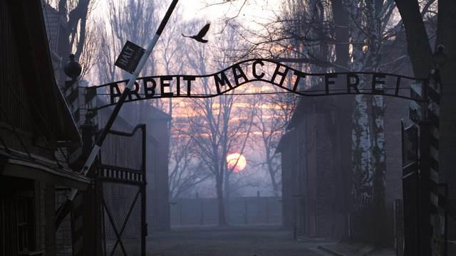 Немецкие СМИ пошутили о «советской аннексии» Освенцима