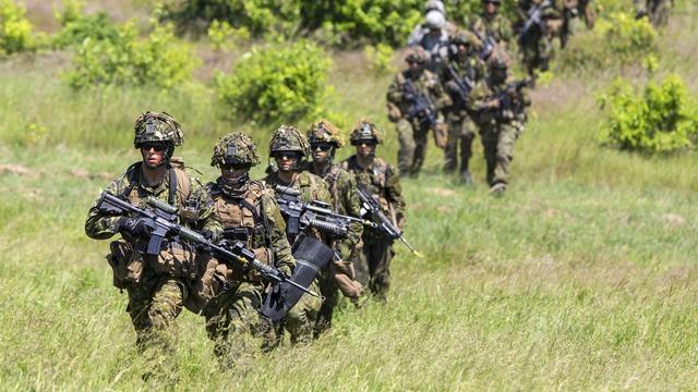 CTV: Отправкой войск на Украину Канада подчеркнет свою антипутинскую позицию