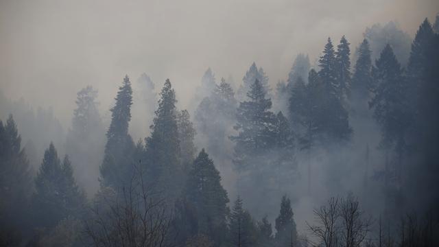 Weather Channel: Америку накрыло сибирским дымом