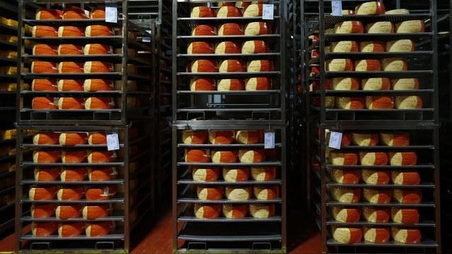 Россиянин пытался провезти в Калининград полтонны европейских сыров