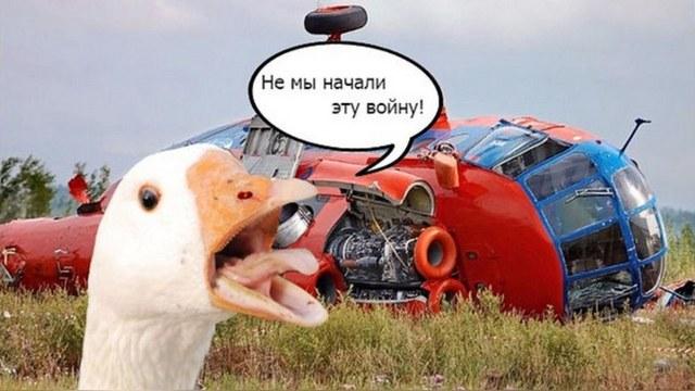 Vocativ: Россияне «отомстили» за раздавленных гусей мемами