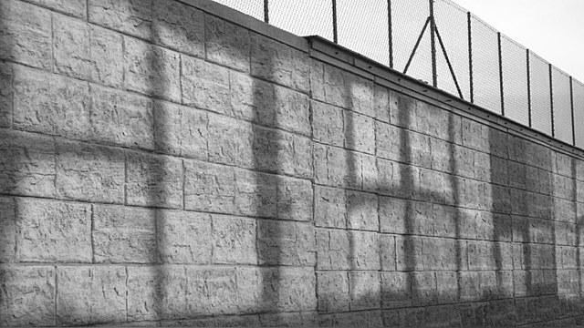 Postimees: Стена на границе с Россией отгородит Эстонию от людей и животных