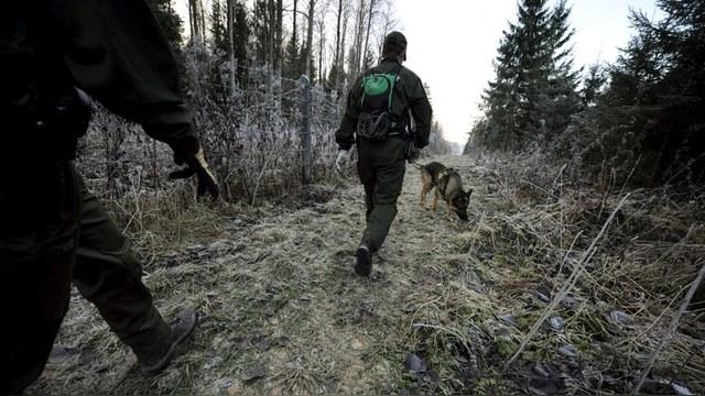 RCI: На границе с Россией финские службы требуют подкрепления – на всякий случай