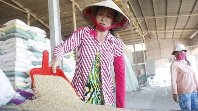 CVN: К свободной торговле с Россией Вьетнам готовится обстоятельно