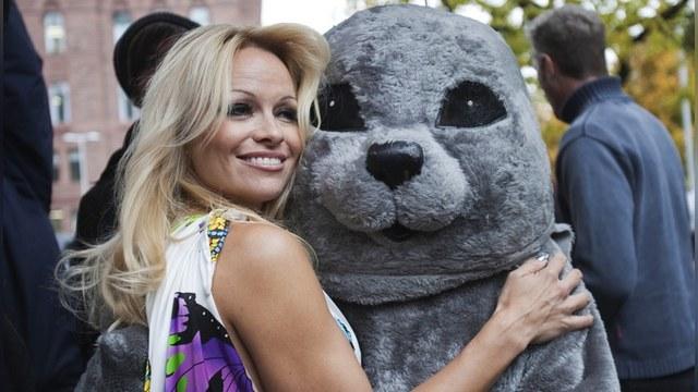 HuffPost: Россия приятно удивила Памелу Андерсон отношением к экологии