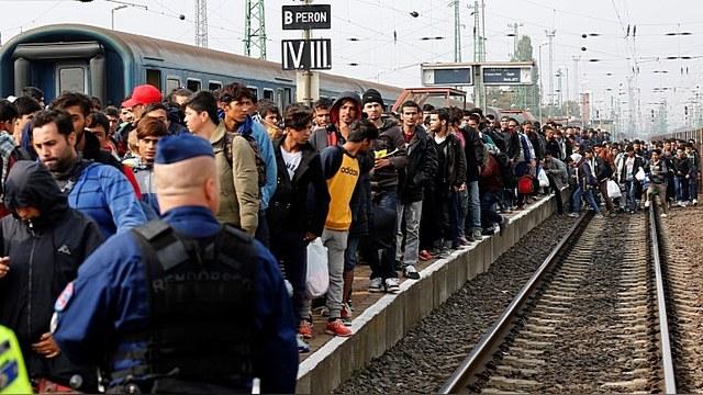 Эстония: Депортировать сотни тысяч беженцев — это нормально