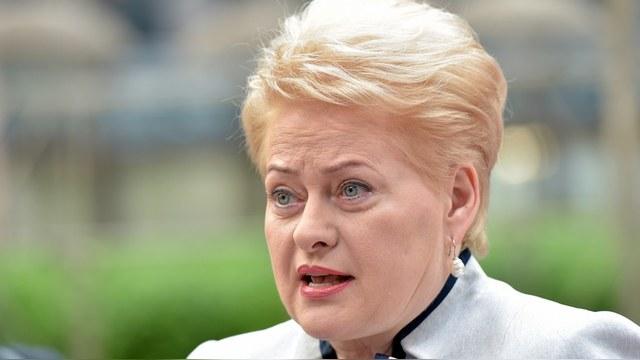 DELFI: Литва насмешила Пушкова отказом участвовать в коалиции против ИГ