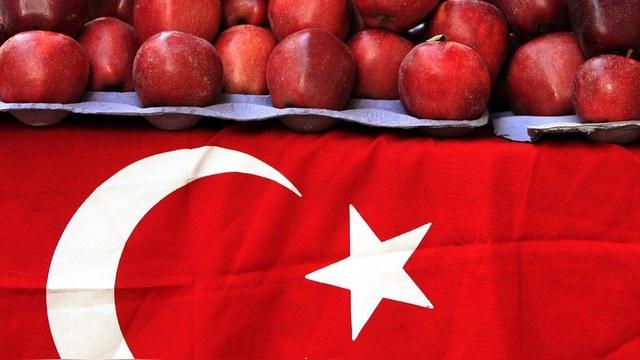 Daily Sabah: Турецкие экспортеры переключатся с России на Африку