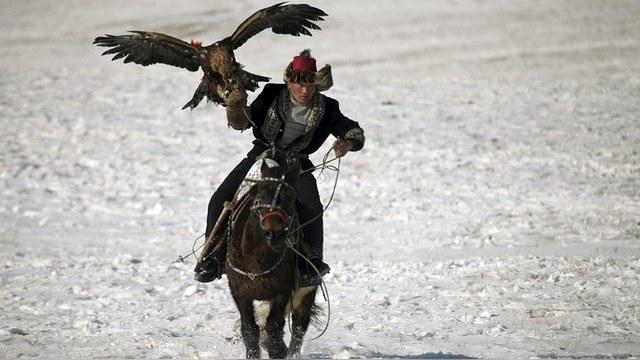 НК: Монголы ждут паспортные данные украинцев, пострадавших от хана Батыя