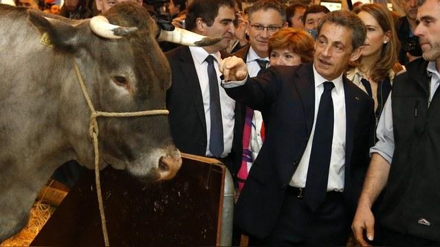 Саркози призвал Францию сменить президента и снять санкции с России