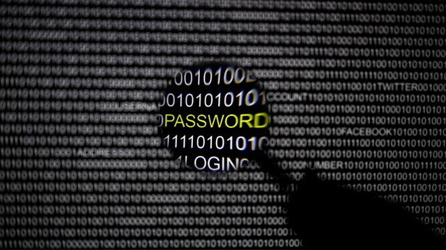 Bild: Германия защитится от «хакеров из российских спецслужб» буквой закона