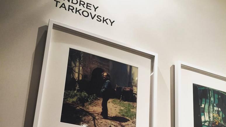 Guardian: «Призрачная» фото-коллекция Тарковского уйдет с молотка