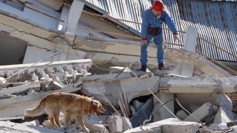 Il Giornale: Россия предложила помощь пережившей землетрясение Италии