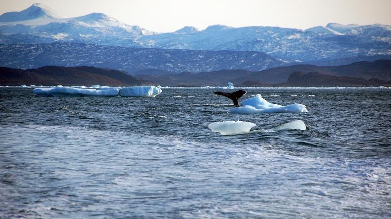 NG: Москва и Вашингтон соревнуются в защите морских заповедников