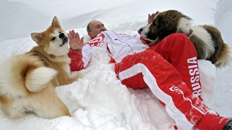Asahi: Перед приездом Путина Япония пустит в ход «щенячью дипломатию»