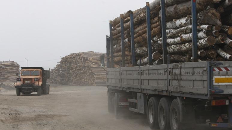 ГОРДОН: Европа требует от Киева рубить лес во имя евроинтеграции