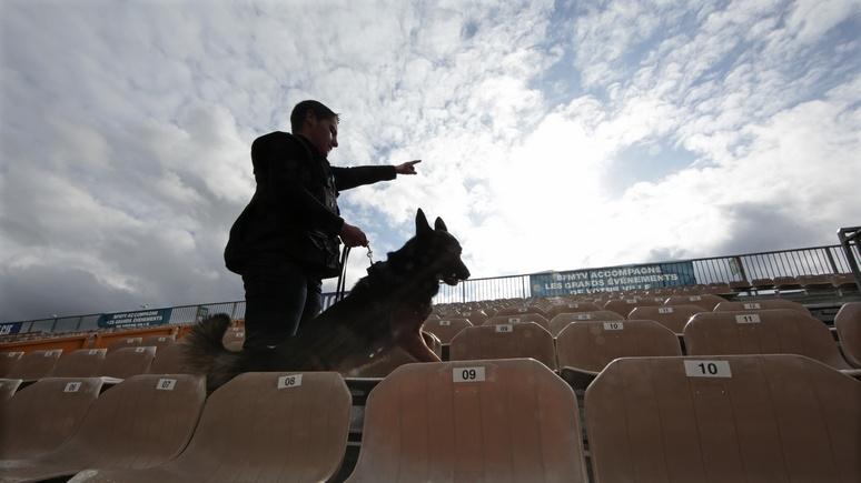 Europe 1: Пса Добрыню признали «негодным к службе» во французской полиции