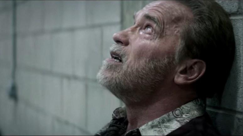 ScreenCrush: «Последствия» авиакатастрофы над Боденским озером дали Шварценеггеру новую роль