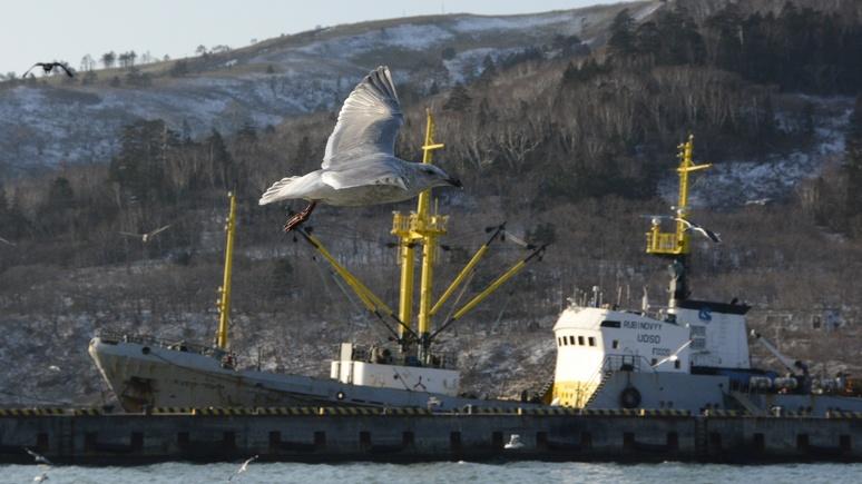 Asahi: новая дивизия России на Курилах затруднит решение территориального спора