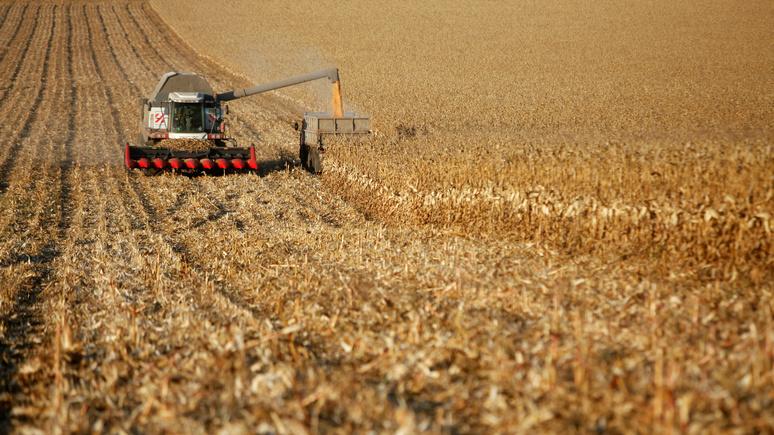 Les Échos: санкции Запада вывели Россию в сельскохозяйственные сверхдержавы