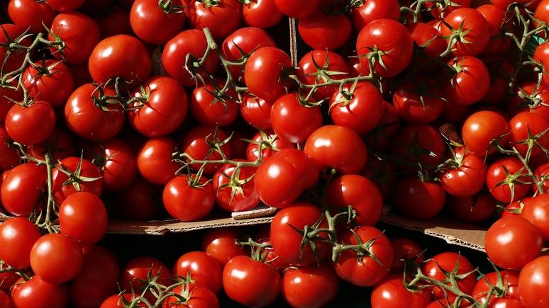 NZZ: Турция «отомстила» России за помидоры пошлинами на зерно