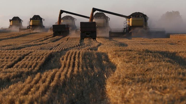 Bloomberg: рекордный урожай зерна станет серьёзным испытанием для России