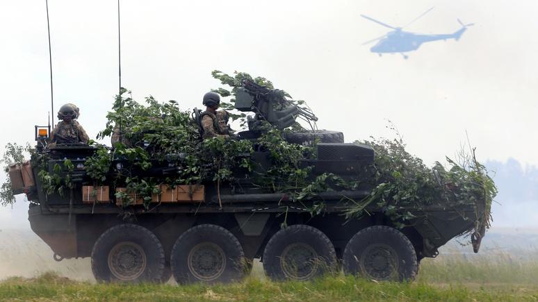 Der Tagesspiegel: американским военным пришлось отложить устрашение России из-за грибов