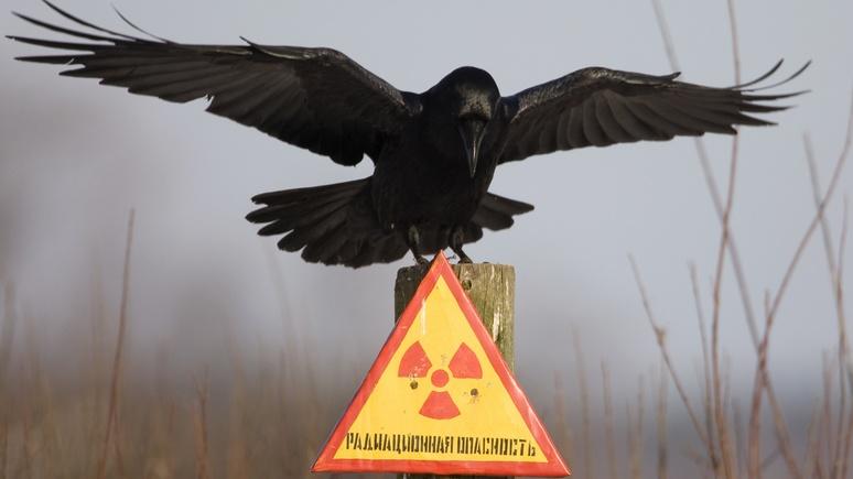 Le Figaro: в России подтвердили утечку радиации на юге Урала