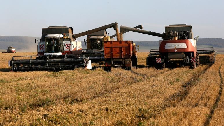 Handelsblatt: эмбарго пошло на пользу России и немецким аграриям