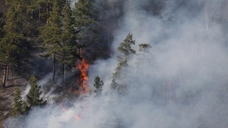 Expressen: пожары в России и наводнения в Индии — глобальное потепление даёт о себе знать