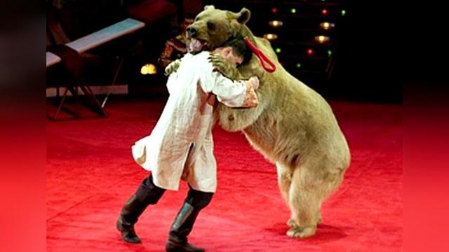 Российский цирк не уступит своего зрителя