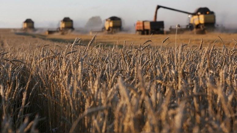 Bloomberg: черноморские порты не справляются с рекордным урожаем пшеницы в России