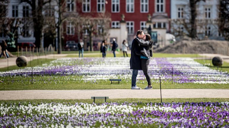 «Стресс, алкоголь и депрессия» — Le Figaro разоблачила миф об «уютном датском счастье»