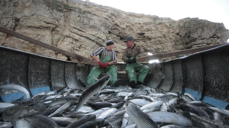 СТРАНА.ua: пьяные украинские моряки решили наладить контакты с крымскими рыбаками