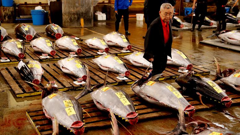 Slate: растущие потребности человечества грозят миру рыбными войнами