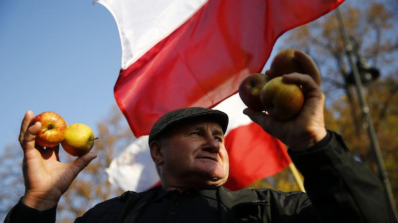 Gazeta Wyborcza: богатый урожай яблок сильно расстроил польских фермеров